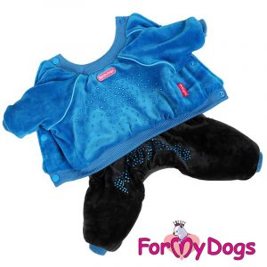 velour suit for dogs in blue kc-003