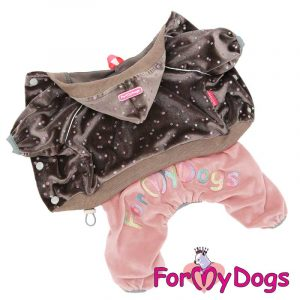 suit for dogs in brown kc-007