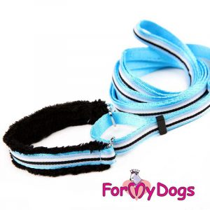 collar with leash in blue op-002