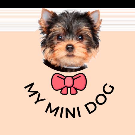 My Mini Dog