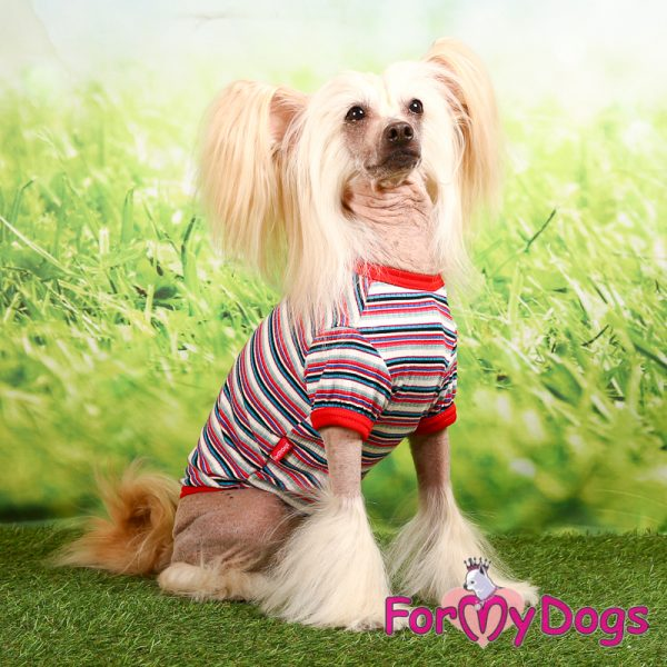 t-shirt decorated by colored stripes ft-004