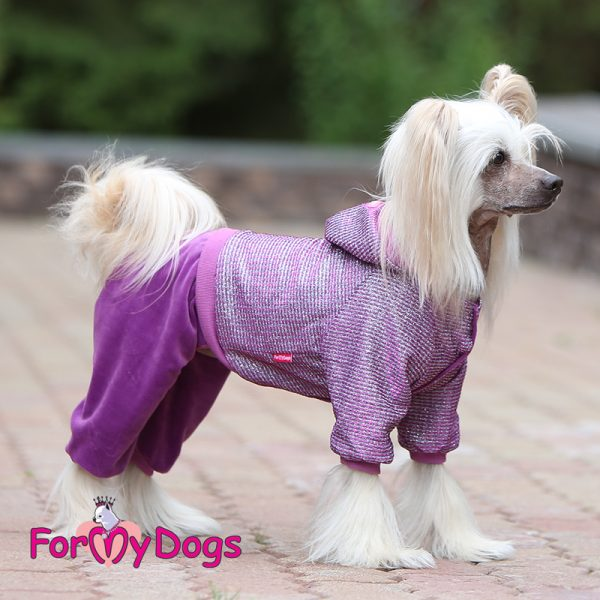 velour suit for dogs in purple kc-019